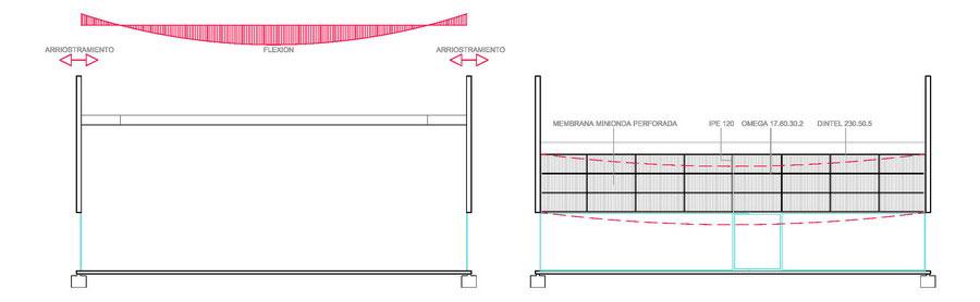Estructura-MENSULAS-Foto04